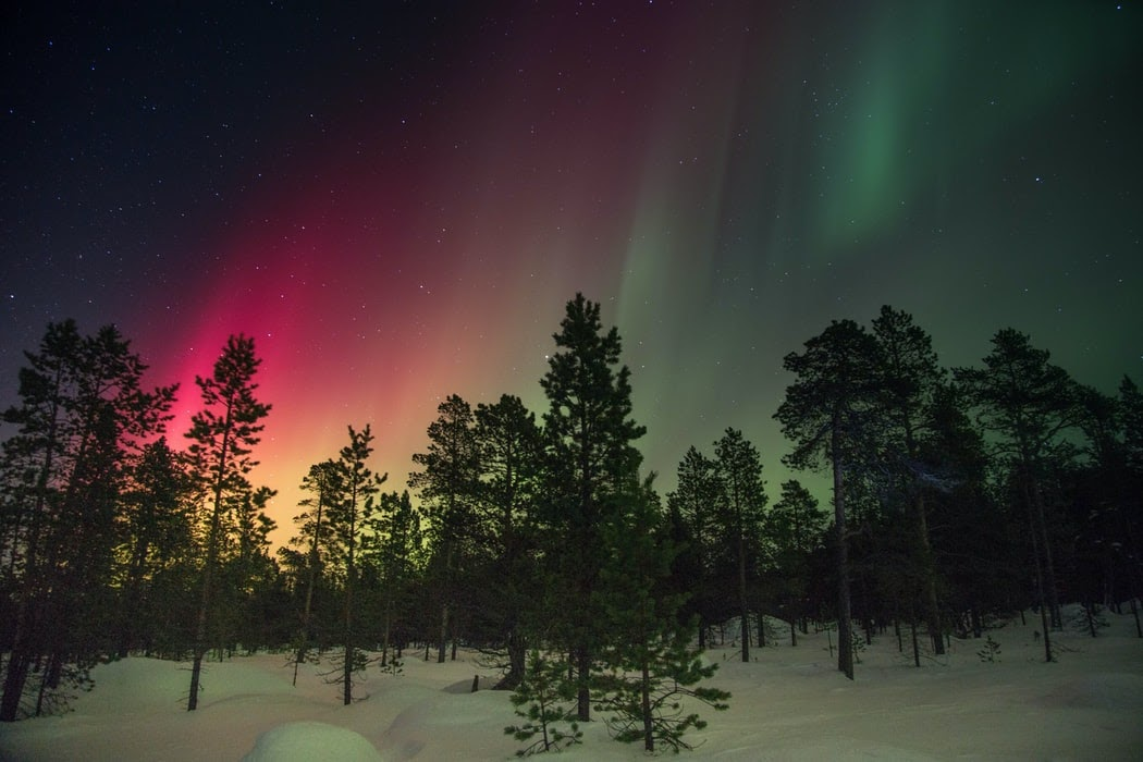 الشفق القطبي: إليك أفضل 5 أماكن لرؤية أضواء الشفق القطبي في أمريكا