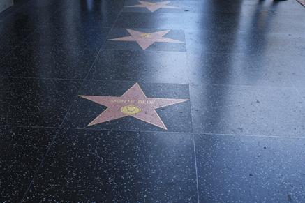 لوس أنجلوس الساحرة