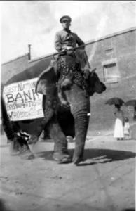 قاتل ماري الفيل