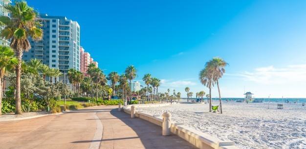 تُعد جامعات فلوريدا من أفضل جامعات الولايات المتحدة الأمريكية