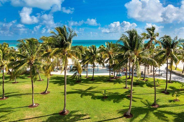 شواطئ ميامي
