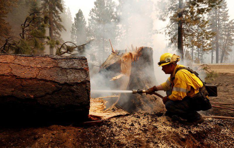 كاليفورنيا تشهد أكبر حريق هائل منفرد في تاريخها