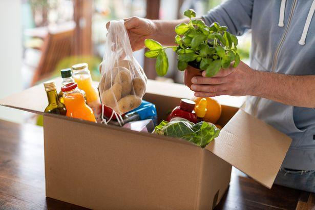 5 نصائح لتوفير ميزانية الطعام في امريكا