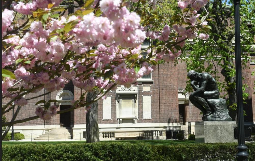 ترتيب الجامعات الامريكية ومصاريف الدراسة في كل منها لعام 2022