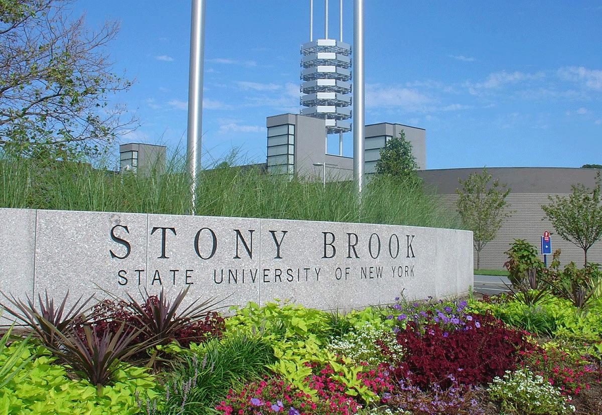 جامعة ستوني بروك نيويورك