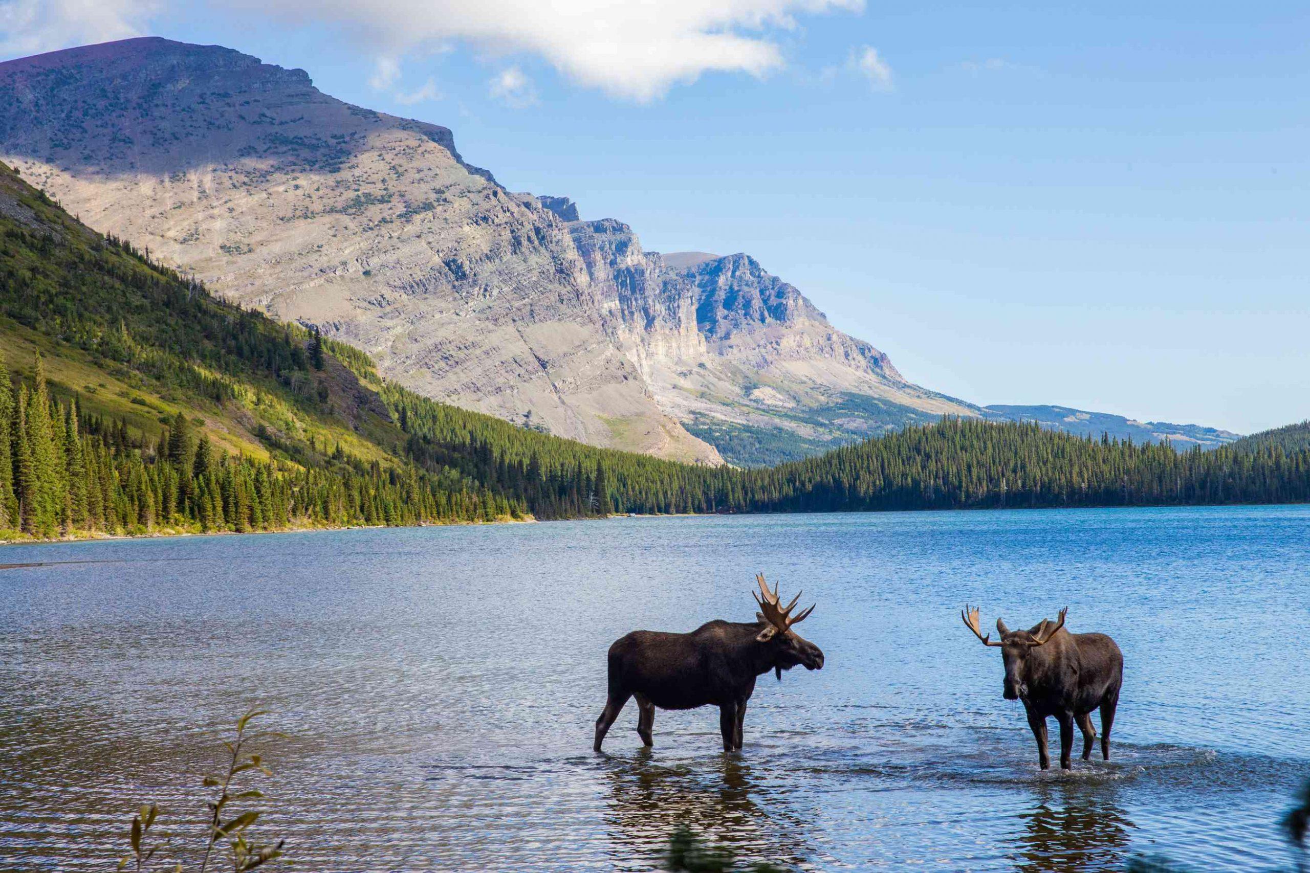 أفضل المعالم السياحية في مونتانا 2022