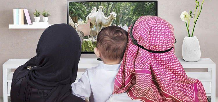 كيف تشاهد القنوات العربية في امريكا - تحديث 2022