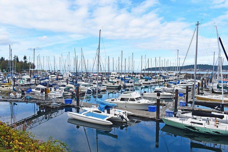 وجهات سياحية في سيكيم واشنطن يمكنك زيارتها في 2022